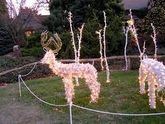 27 Lighted Deer (megatti) Tags: christmas decorations deer lahaska pa peddlersvillage pennsylvania