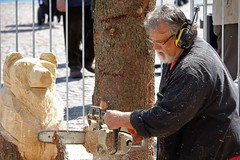 IMG_0427 (www.ilkkajukarainen.fi) Tags: helsinki suomi finland visit suomi100 eu europa scandinavia happylife museumstuff wood carving puu tö taide art folk moottorisaha chainsaw stihl chainshawartist juhakäkelä sculture