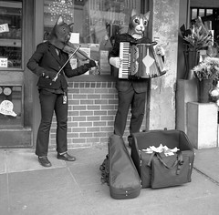 Street musicians with a difference (1 of 1) (sailronin) Tags: streetphotography film 120film fujiacros neopan rolleiflex6008 blackandwhite bw musicians costumes violin accordion buskers pikeplacemarket epsonv500 hc110 zeiss80mmplanar zeisslens