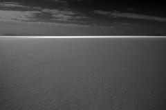 perennial quest (Mindaugas Buivydas) Tags: lietuva lithuania bw spring march delta nemunasdelta nemunodeltosregioninisparkas nemunasdeltaregionalpark kuršiųmarios curonianlagoon minimal minimalism mindaugasbuivydas songofafavoriteband whiteinblack