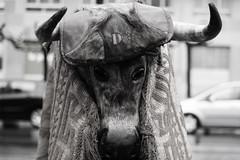 antruejos_10 (alfonso_gm) Tags: antruejos carnaval astorga spain leon celtic ritual wintermasks