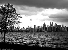 Toronto Skyline..... (mishlove1) Tags: downtown downtowntoronto outandabout photowalk photowalking topw topw2017rs torontotorontoisland walkingwithcamera