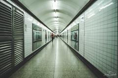 The whole way. (Jordi Corbilla Photography) Tags: nikon jordicorbilla jordicorbillaphotography 50mm f14 streetphotography streetphoto street metro underground