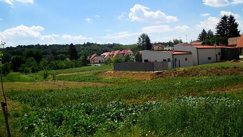 Pohled na domy