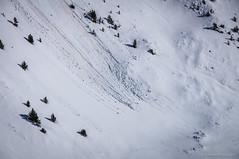 Avalancha (SantiMB.Photos) Tags: 2blog 2tumblr 2ig nieve snow avalancha avalanche geo:lat=4239155082 geo:lon=216017251 geotagged fustanya cataluna españa esp