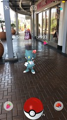 Niantic, please bring back the #FireAndIce Event, Sneasel agrees!  Fun game you should play if you haven't yet!! 🙌🔥 #PokemonGo #Pokemon #Sneasel #Fun #ilovethisgame #app #mall #TempeMarketplace #awesome #gen2 #Niantic #berry (AlexGilbertOfficial) Tags: fireandice pokemongo pokemon sneasel fun ilovethisgame app mall tempemarketplace awesome gen2 niantic berry