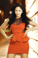Indian Actress NIKESHA PATEL Hot Sexy Images Set-1 (53)