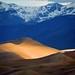 Morning LIght on Star Dune