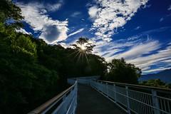 清境天空步道(New air trail @ Cinjing farm,Natou county Taiwan)。 (Charlie 李) Tags: clouds summer blue sky 5d3 canon 天空步道 清境農場 taiwan natoucounty green light sun cinjingfarm airtrail