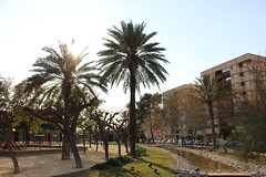 Jardín La Seda Murcia (IvánSevilla22) Tags: parque paisaje la seda murcia palmeras río patos