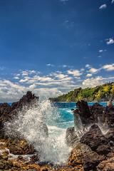 IMG_9992-Edit.jpg (istewart) Tags: hawaii bigisland iphoto kamuela unitedstates us