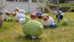 Colourful ceramics sheep herd, Baltrum (Alta alatis patent) Tags: baltrum ceramics herd sheep colours green funny art