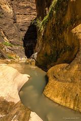 Orderville Canyon: sun shining in (NettyA) Tags: 2017 canyon ordervillecanyon sonya7r thenarrows usa utah virginriver zionnarrows zionnationalpark travel