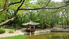 Changdeok Palace, Secret Garden, Seoul (in_my_skin) Tags: changdeokpalaceandsecretgarden seoul changdeok palace changdeokgung secretgarden spring blossoms flowers asia