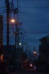 shizuoka1056