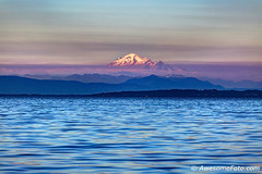 Mt. Baker at misty sunset (james c. (vancouver bc)) Tags: background sky beauty fog mist misty foggy cloud cloudscape nature summer sunset white orange blue green purple boundarybayregionalpark delta bc britishcolumbia canada usa unitedstates border landscape tsawwassen foreground water sea whashingtonstate mountain snow scenic outdoor summit evening tourism beautiful peak scenery dusk twilight color colour colorful colourful mtbaker mountbaker wave