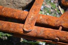 Summer Lawn Chair (KaDeWeGirl) Tags: newyorkcity bronx pelhambaypark rust chair forgotten neglected washedup decay sooc
