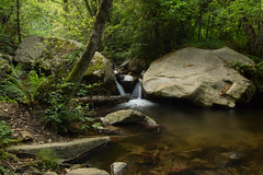 Riera de Riells (Hachimaki123) Tags: paisaje landscape montseny parcnaturaldelmontseny cascada water waterfall agua río rio river riera riu rieraderiells