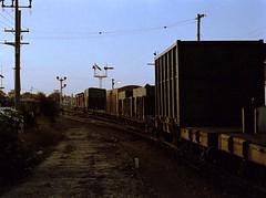 176-1-3967: Devonport, late winter 1983 (EBRG16) Tags: tgr tasmanianrailways devonport station