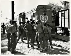Egypt Railways - Egyptian State Railways class G8 diesel locomotive Nr. 3519 (General Motors, 1956) (HISTORICAL RAILWAY IMAGES) Tags: egypt railways g8 diesel locomotive un 1956 suez canal crisis gm emd