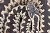 Adder (Daniel Trim) Tags: european adder viper vipera berus snake uk england reptile wildlife nature animal animals photography photo photograph