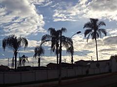 Contraste (polianaamaral) Tags: nuvens palmeiras céu colors contraste casas fios postes grama rua asfalto