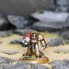 Brother Pavo (blood.fists) Tags: warhammer40k 40k terminator bloodfists tartaros