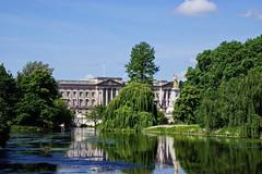 St. James´s Park und Buckingham Palace (Magdeburg) Tags: london st james´s park stjames´spark stjames´sparklondon buckingham palace buckinghampalace buckinghampalast palast