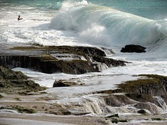 Facing the wave (thomasgorman1) Tags: swimmer bodysurfer wave crashing bigwave beach surf bigsurf hawaii oahu ocean sea lavarock rocks crush pacific island