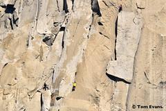 DSC_8970 (steph_abegg) Tags: 2017 california notmyphotos steph