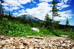 DSCF6074_EDIT (Miroslav Pivovarsky) Tags: vysoke tatry slovak slovakia natur nature outdoor fujifilm x70 mountains hiking hikings strbske pleso tarn sun day sunday