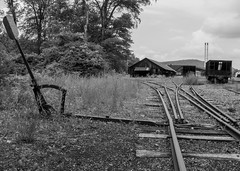 Triple Stub Switch  [EXPLORED] (trainmann1) Tags: nikon d90 amateur handheld summer june 2017 eastbroadtop eastbroadtoprailroad ebt rail railroad heritage historic antique relic abandoned neglected rusty crusty rust crust dirty orbisonia pa pennsylvania rockhill rockhillfurnace train trains bw blackwhite blackandwhite desaturated buildings exterior outside nikkor 18200mm switch threeway unique rails track tracks ballast metal steel iron rollingstock shops trees grass triplestubswitch railroadswitch narrowgauge explore flickrexplore