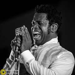 Black is Back_Madrid Gibson 17_0426 (Juan The Fly Factory) Tags: fajardo theflyfactory flyfactory concert bolo concierto best madrid spain foto photo gig light juan perezfajardo music juanperezfajardo show musica vintage trouble black is back 170617