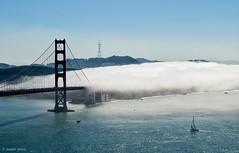 Gate Fog (Joseph Greco) Tags: bridge goldengatebridge sanfrancisco fog bay harbor water landscape oceanscape cityscape sutrotower