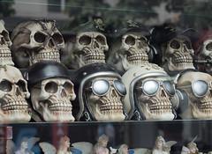 skulls [and fairies] (186/365) (werewegian) Tags: skulls bikers caps shades shop window fairies werewegian glasgow jul17 skull 365the2017edition 3652017 day186 5jul17