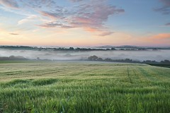 EARLY MORNING MISTS (midlander1231) Tags: cornwall marazion westcornwall landsape earlymorningmists mist colour sky clouds summer nature