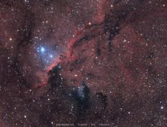 Fighting Dragons of Ara - NGC 6188 (Delberson Tiago) Tags: astrofoto astrofotografia astronomy astrophotography nebulae nebulosa cosmos telescope telescopio oriontelescopes qhy universe universo dso deepsky outside night nightsky
