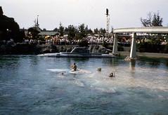 Mermaids in the Submarine Voyage at Disneyland (Tom Simpson) Tags: mermaid mermaids submarinevoyage disney disneyland 1960s vintage vintagedisney vintagedisneyland tomorrowland submarine