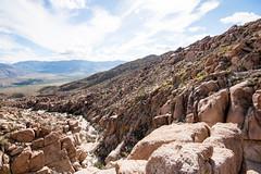 DSC03344 (eddyizm) Tags: gothefuckoutside sandiegocounty a700 anzoborrego california desert eastjesus eddyizm eduardocervantes neverstopexploring slabcity sonya700 sonyalpha
