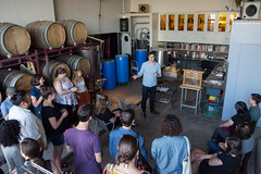Bug Night at Enlightenment Wines (NYSCI) Tags: honeys enlightenment wines bug night boroughbees afterdark field trip