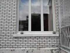 Hoo? (navejo) Tags: montreal quebec canada parkex owls brick window railing