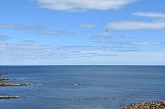 Calm sea at Collywell Bay (DavidWF2009) Tags: northumberland seatonsluice collywellbay sea rocks