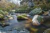 Duchray Water (mscelnik) Tags: aberfoyle forest hillwalking kinlochard water river longexposure duchraywater