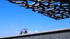 UMBRELLAS (VinZo0) Tags: parapluie parasol people gens umbrella mucem marseille massilia bleu blue sky ciel architecture exterieur city ville