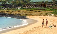 Island resort beach (thomasgorman1) Tags: sea tide ocean beach outdoors resort people women bikini view hawaii lanai fujifilm trees palmtrees building umbrellas