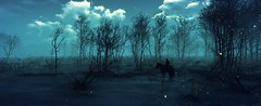 """""""Night rider"""" (L1netty) Tags: night rider swamp thewitcher3 gaming reshade panorama games screenshot landscape pc cdprojektred outdoor fantasy 10k color pano scenery dark blue geralt character sky nightsky clouds videogame"""