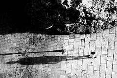 Black and White Shadows (Peter Branger) Tags: activeassignmentweekly streetview blackwhite blackandwhite dubrovnik croatia bestofweek1 bestofweek2 bestofweek3