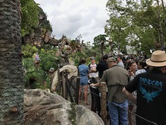 "Pandora ""The World of Avatar"""