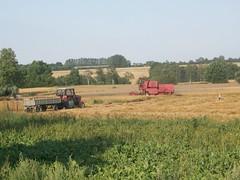 Harvest time (grzegorzziętkiewicz) Tags: harvest erntezeit żniwa kujawy poland 2012