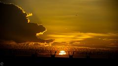 Golden Sunset! (raveclix) Tags: raveclix india canon sigma canon5dmarkiii sigma150500mmf563apodgoshsm bangalore bengaluru karnataka kia sunset nature